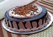 Choco Nova Cake