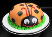 Always & Forever Cakes 102